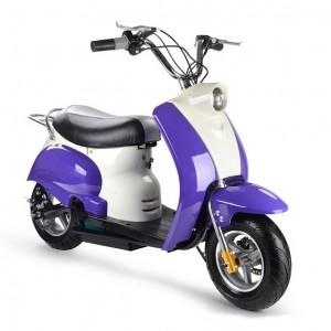 purplestud03